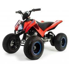 Elektromobilis motociklas INJUSA 24V X-Treme Hunter 6024
